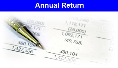 Annual Return icon