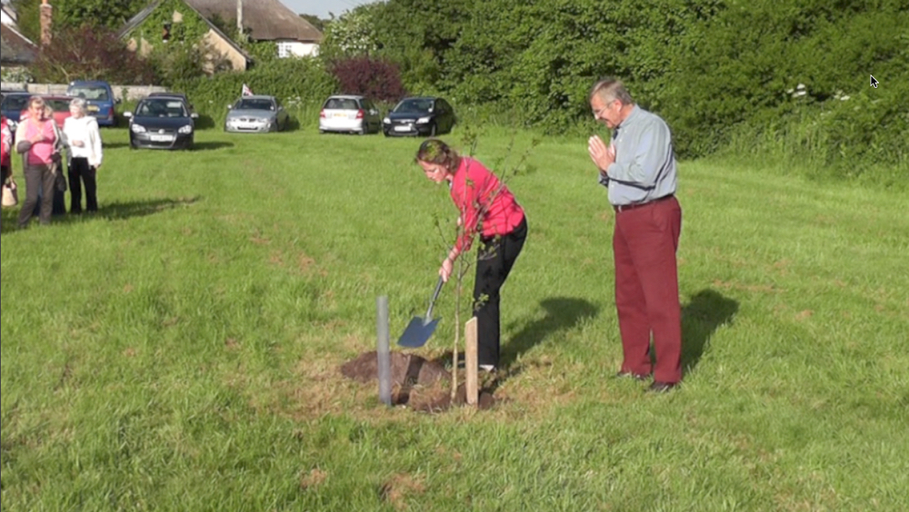 planting of jubilee oak.jpg