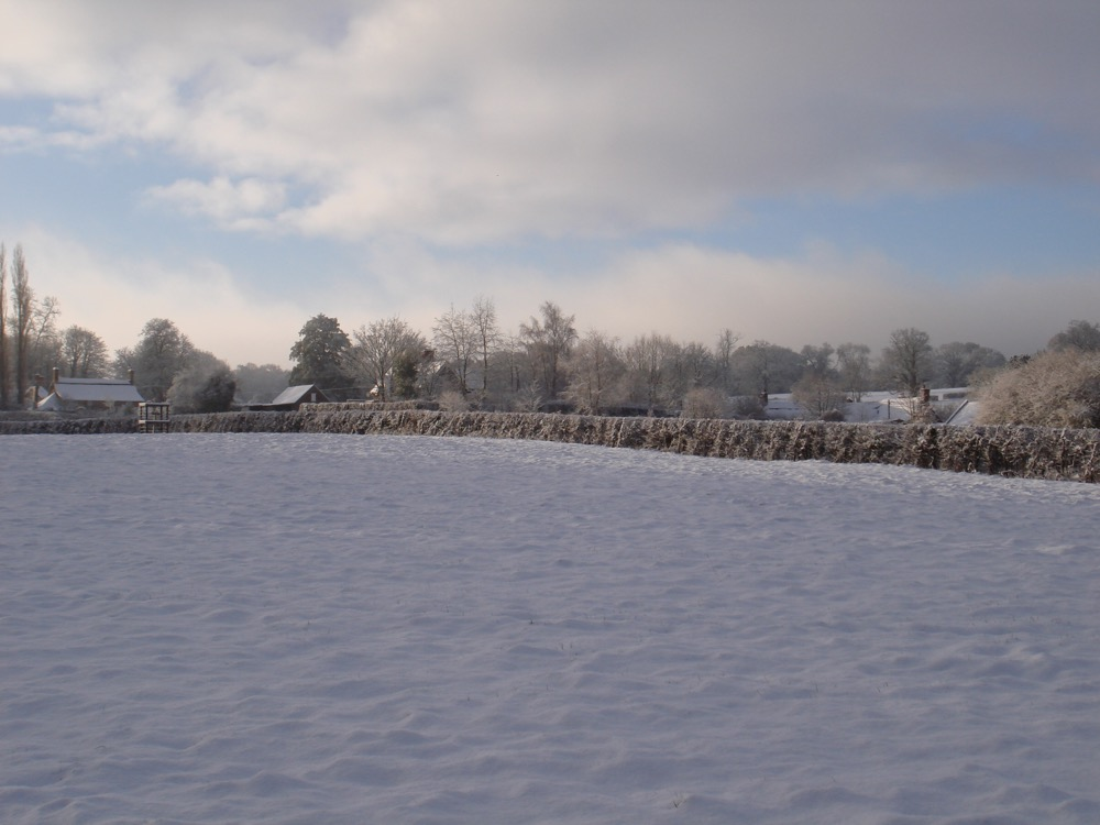 winter around the village 2011 a.jpg