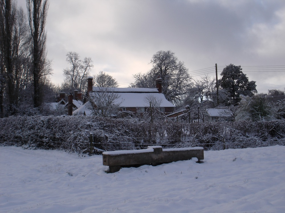 winter around the village 2011 j.jpg