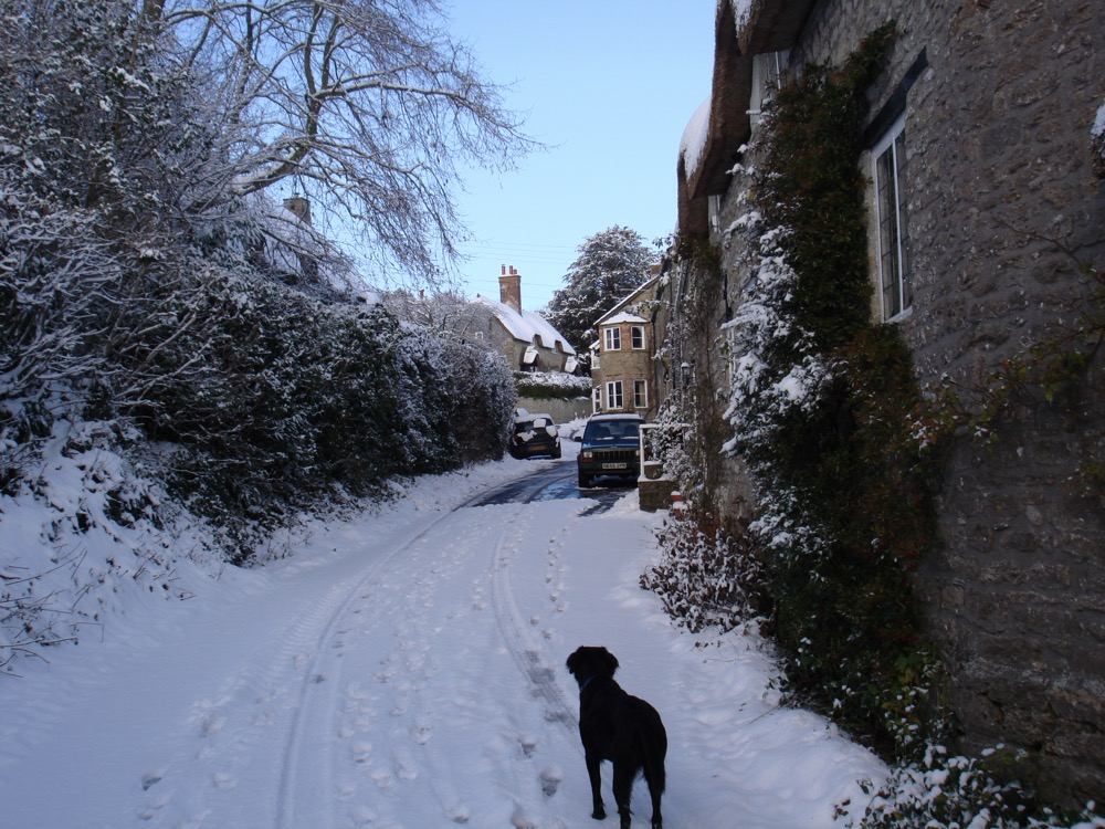 winter around the village 2011 l.jpg